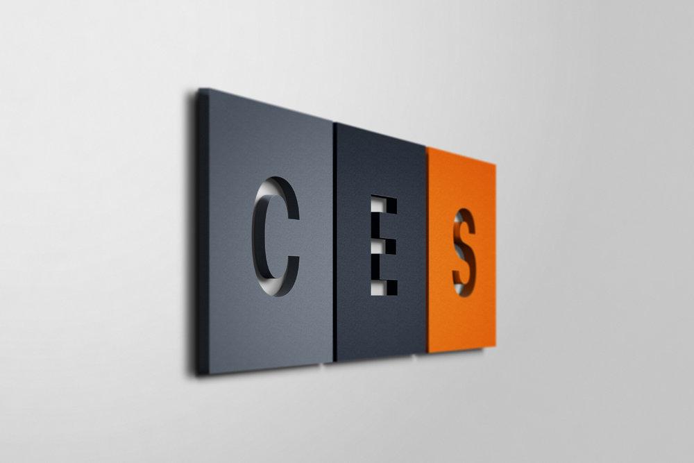 CES Case Study V2-12.jpg