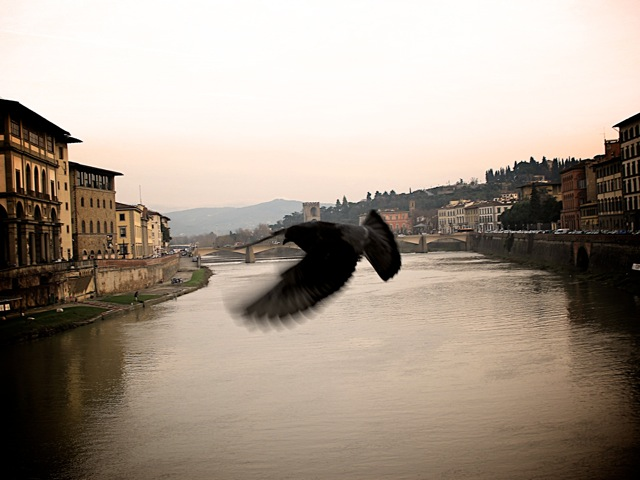 A great shot from JP a photographer mate on holidays - Flight of  Florence