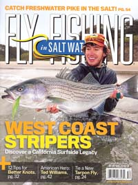 NFN_Fly_Fishing_in_Salt_Water_Cover.jpg