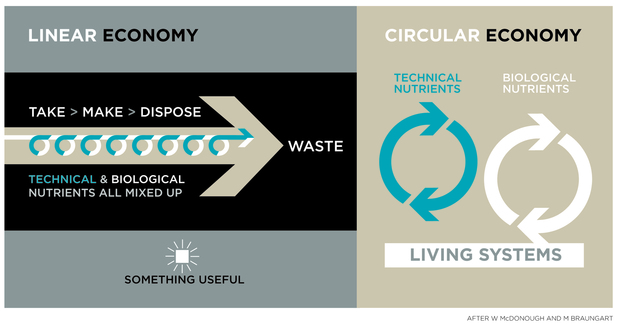 Circular Economy graphic.jpg