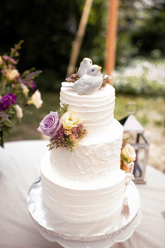 Aviary cake photo.jpg