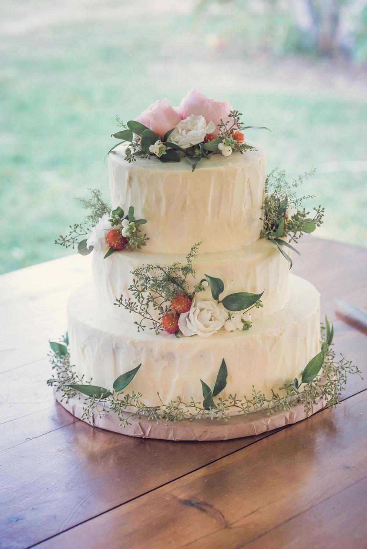 Caroline and Cole's cake.jpg2.jpg