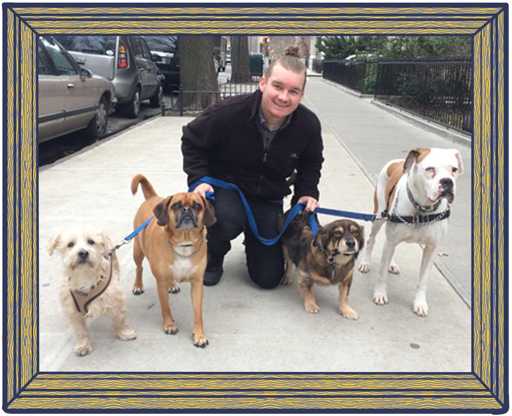 brooklyn-dog-walker.jpg