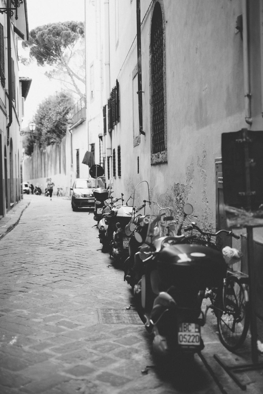 Florence Feb 2014 104.jpg