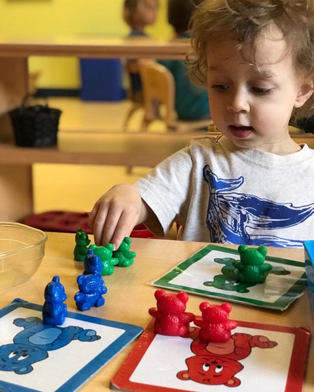 Visual discrimination helps a child later recognize differences in letters and number symbols and is a skill that can be developed at an early age. This PrePrimary child is sorting objects by color! #montessori #suzuki  #earlychildhood