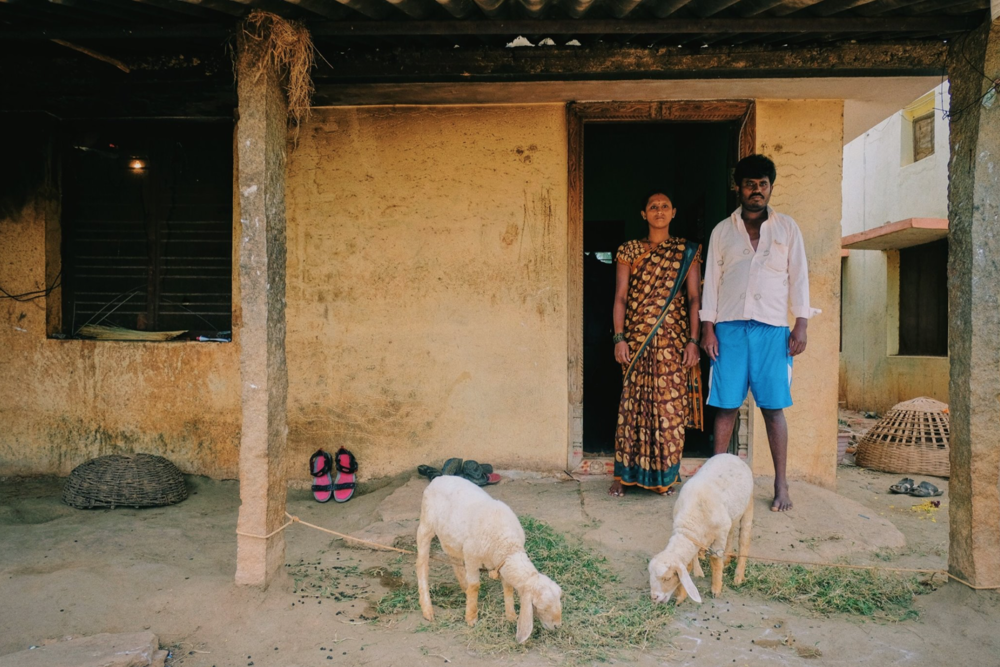 It is estimated that one third of men in the larger Devanahalli area are addicted to alcohol. Alcohol is accessible and used from an early age. Moreover, adulterated alcohol brings in additional health challenges to the men here who consume it. This is a portrait of Srinivas and his wife Varalakshmi. Srinivas was an alcoholic for 15 years but has been clean now through the deaddcition camps and counselling done by  #BangaloreBaptistHospital  in partnership with AA. Varalakshmi told us that physical abuse and socail stigma crippled her life all these years but after the change in her husband, she has a feeing of dignity and respect. She can stay in her house and spent out in the community in peace.