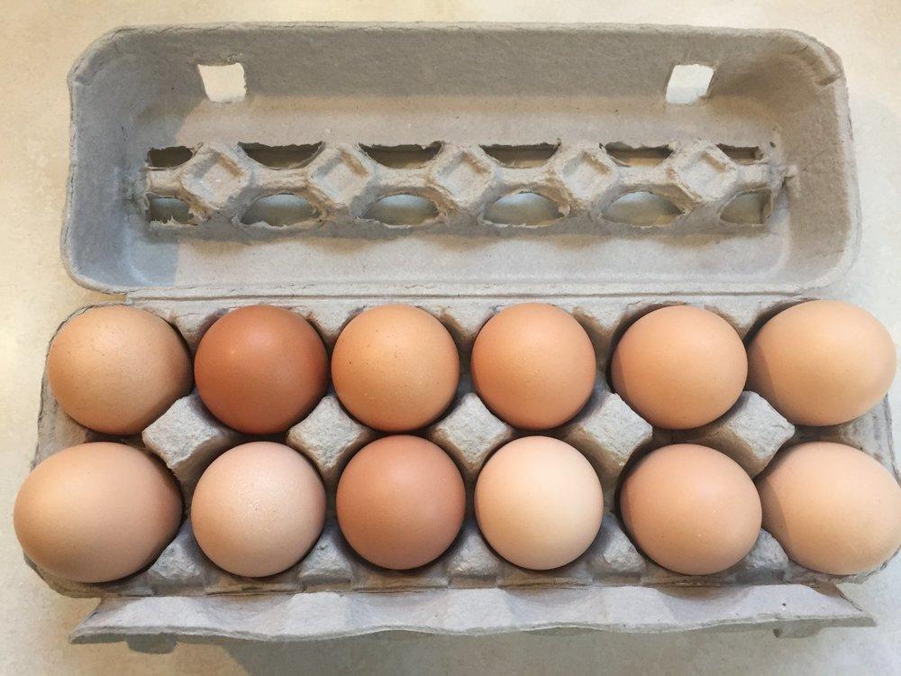 eggshare.jpeg
