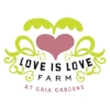 love-is-love-gaia-square.jpg