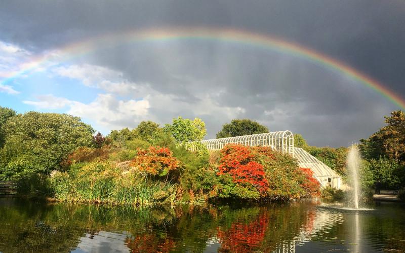 rainbowoverkew