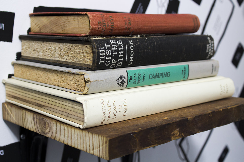 bookshelf angle lowres.jpg