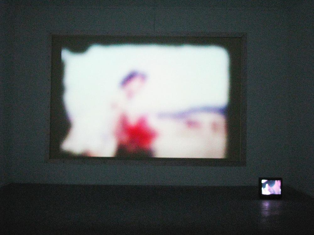 bienal3.jpg
