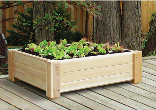 Traditional Outdoor Planters.jpg