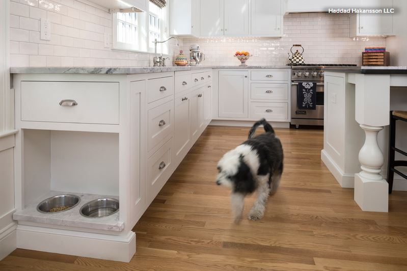 Pet Friendly Design Making Room For The Dog Dish