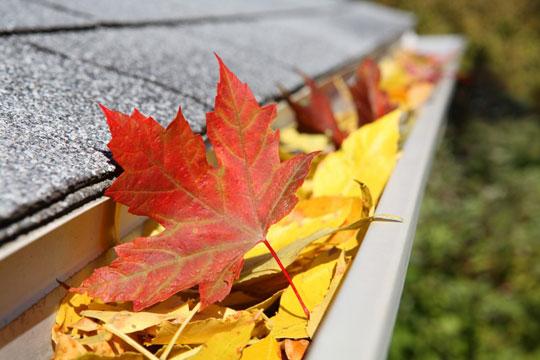 fall_home-gutter.jpg