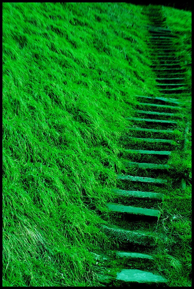 Pantone 2013 Color of the Year - Emerald.jpg