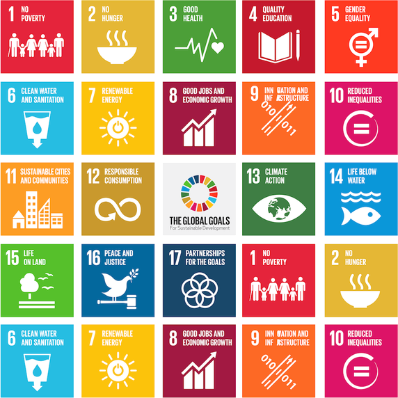 United Nations Sustainable Development Goals SDGs
