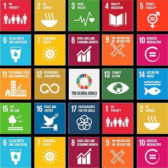 United Nations  Sustainable Development Goals  SDGs