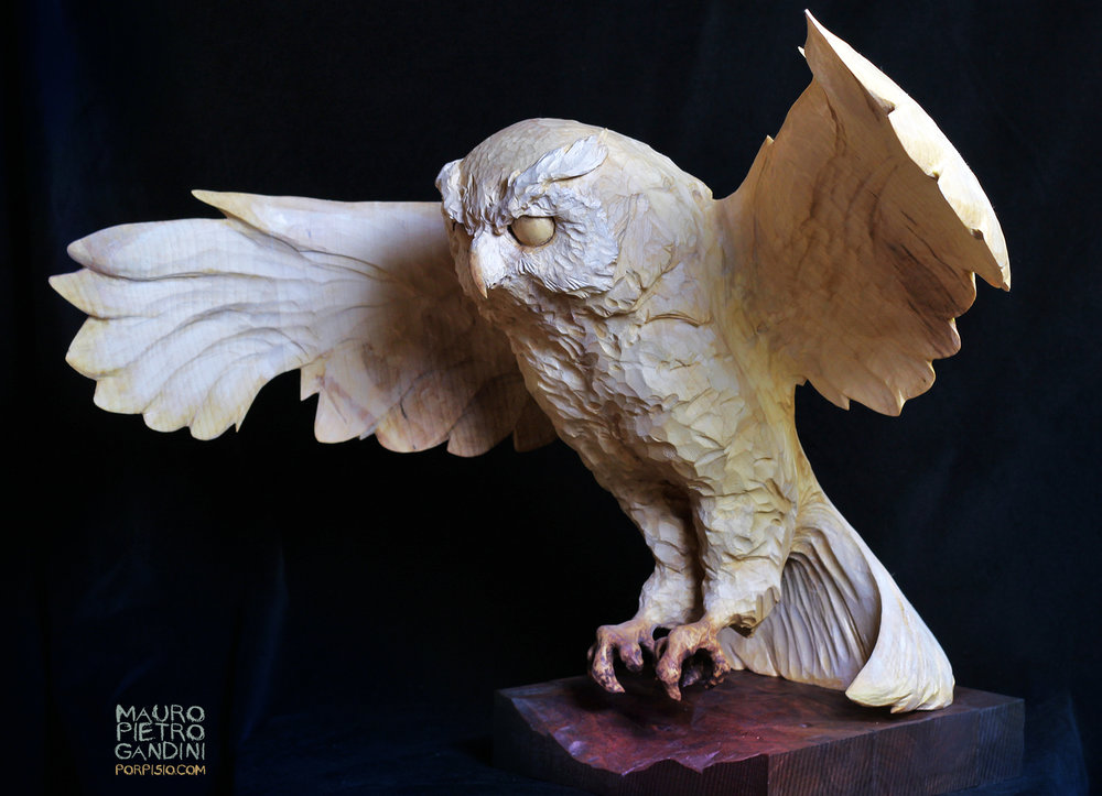 Owl - Gufo, maple wood, realsize