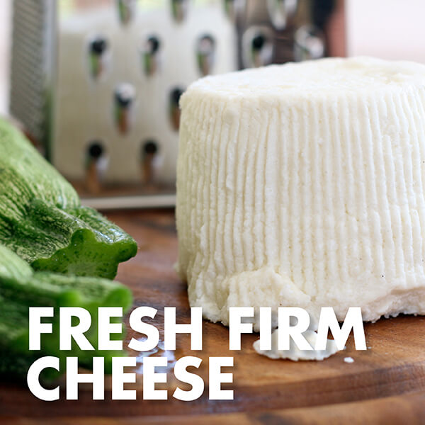 Fresh Firm Cheese