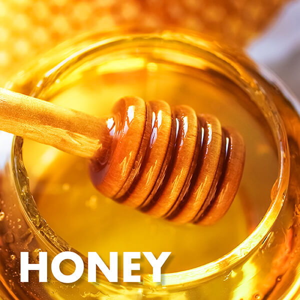 Golden Grains Dubai Export Honey