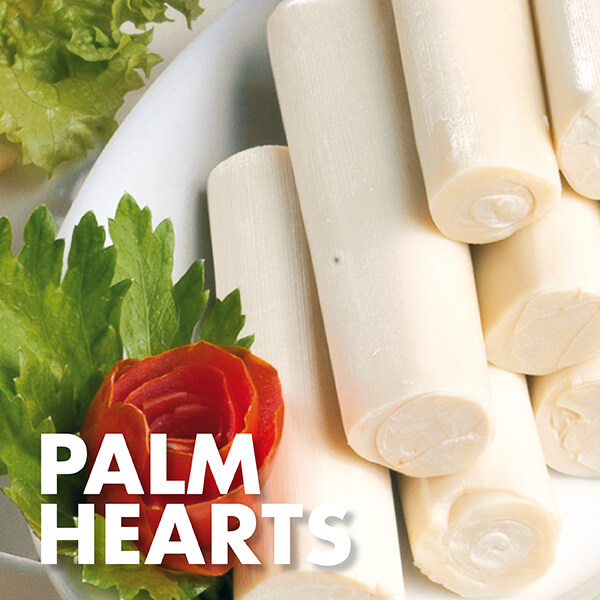 Golden Grains Dubai Export - Palm Hearts.jpg