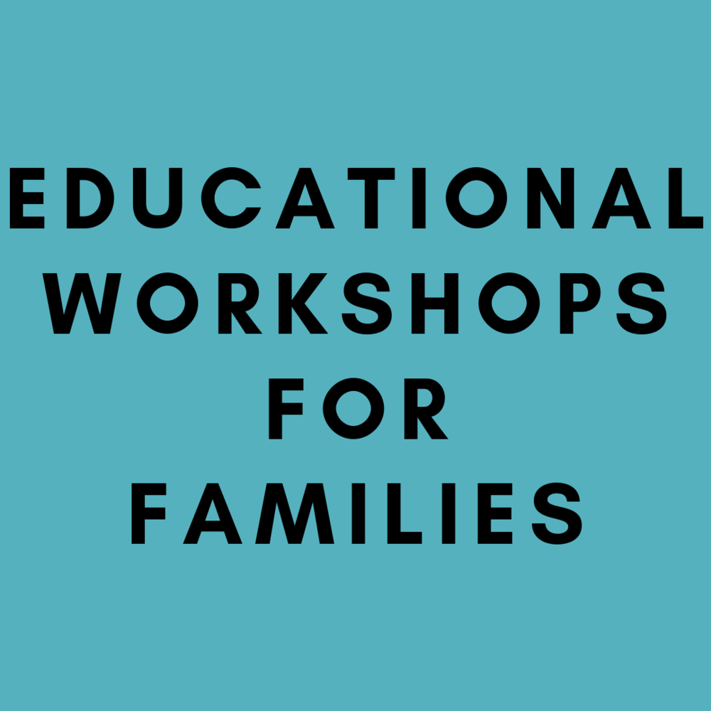 Help Wu Yee families  gain skills to improve their workplace and economic opportunities by creating and recruiting volunteers to facilitate personal finance and ESL workshops, and more, based on family needs.