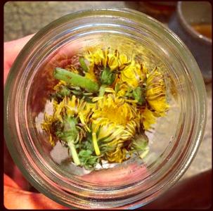 Dandelion-Jar