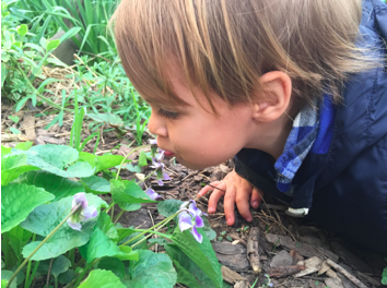 My sweet flower lover, kissing the Violets