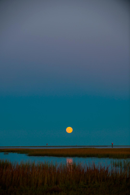 moon__DSC1376.jpg