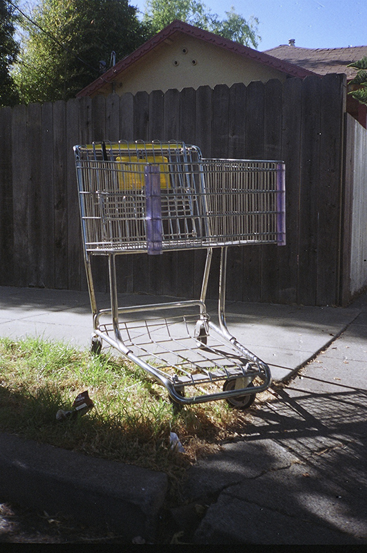 shoppingcartberkeley.jpg