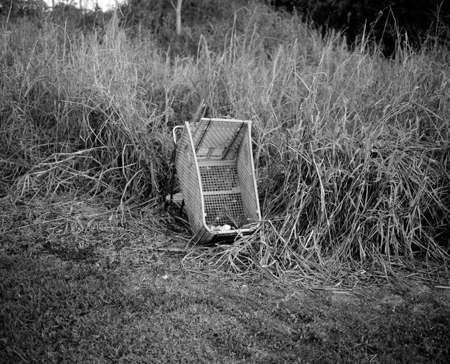cart002.jpg
