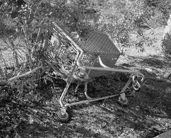 cart003.jpg