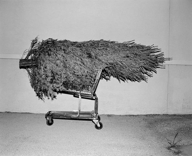 cart004.jpg