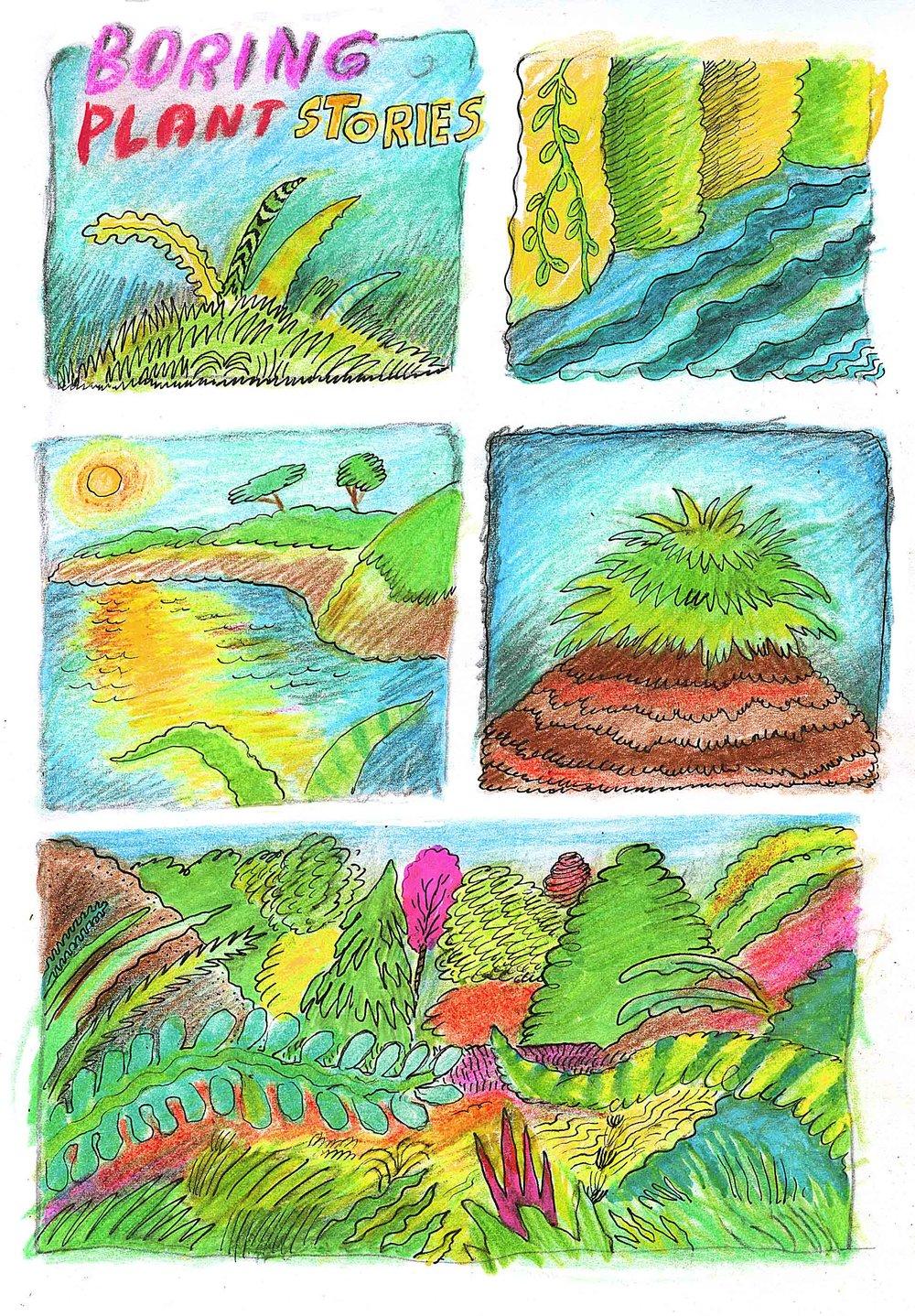 """Boring plant Stories"", 2017"