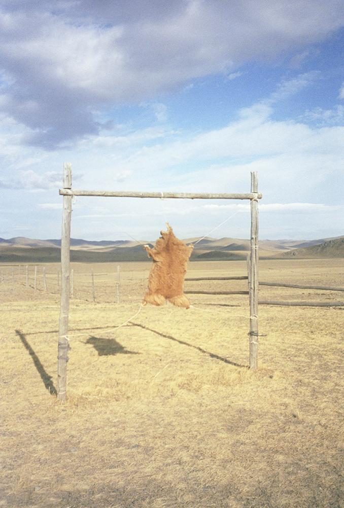 Mongolia Postcards_7.jpg