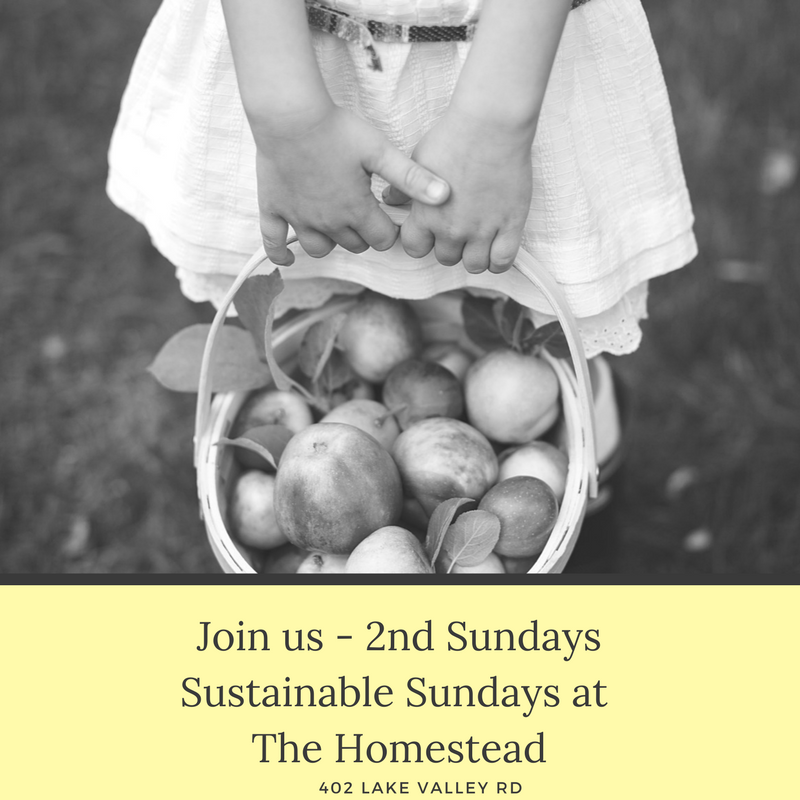 Join us - 2nd SundaysSustainable Sundays at The Homestead.png