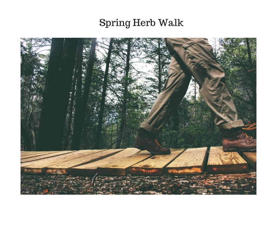 Spring Herb Walk.jpg