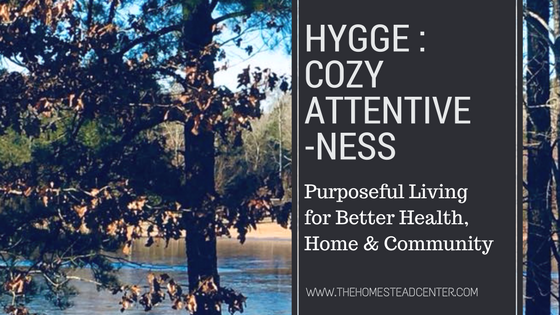 Hygge - Cozy Attentiveness.png