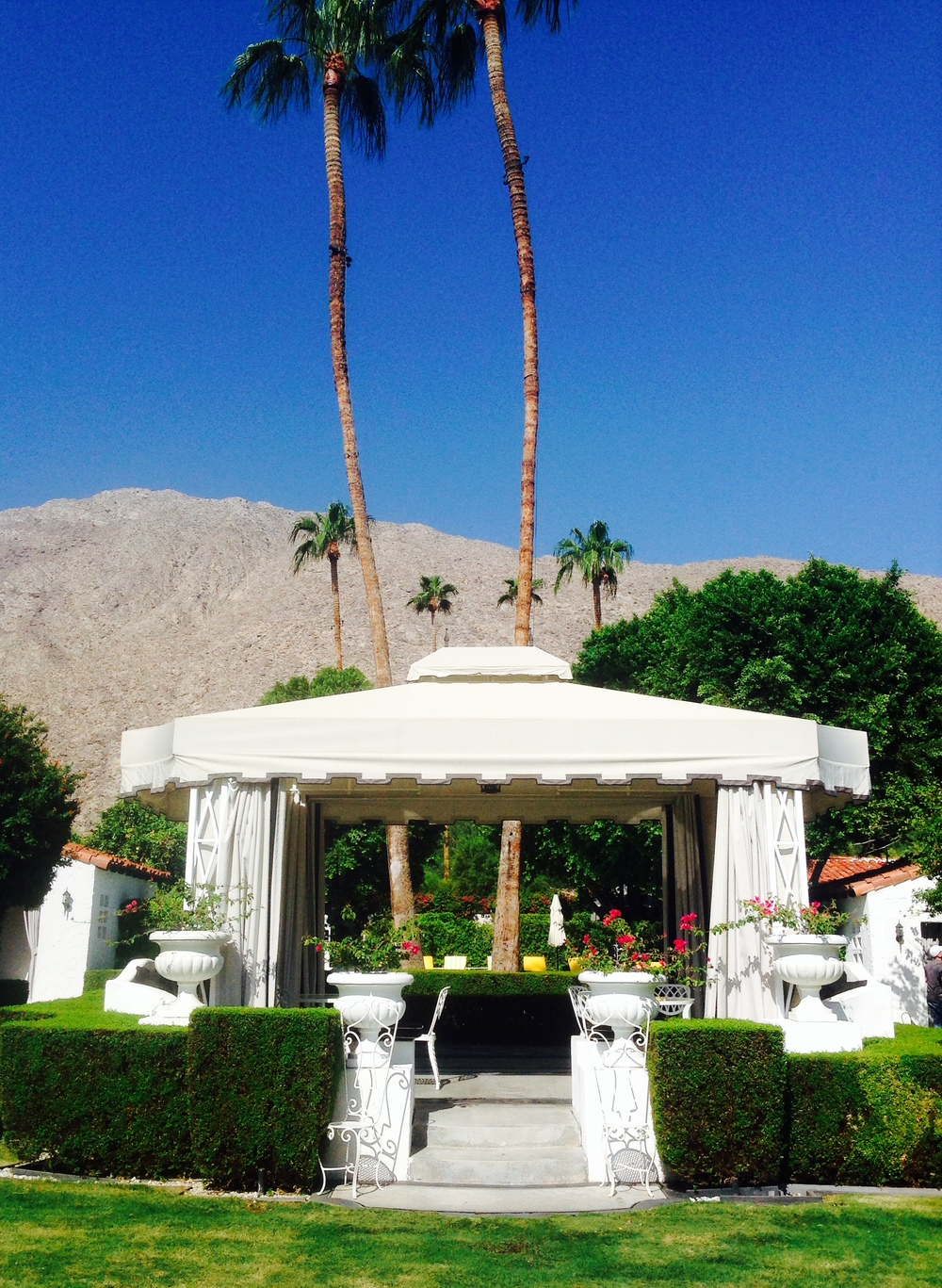 Stunning grounds at the Viceroy Palm Springs