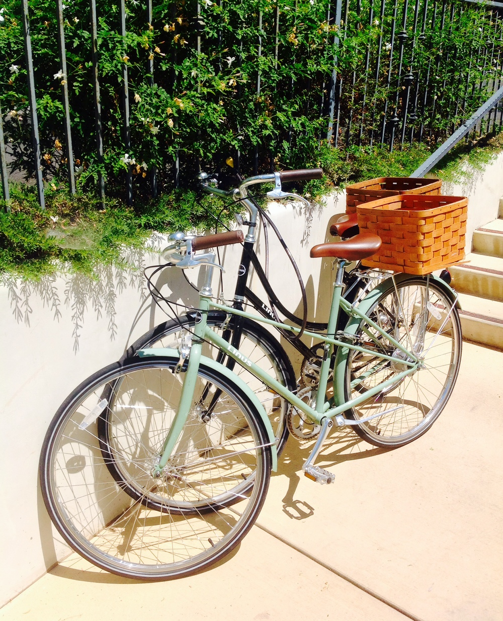 This is a picture of 2 bikes WE DID NOT RIDE. I took a photo- then contemplated riding them- but lay by the pool instead.