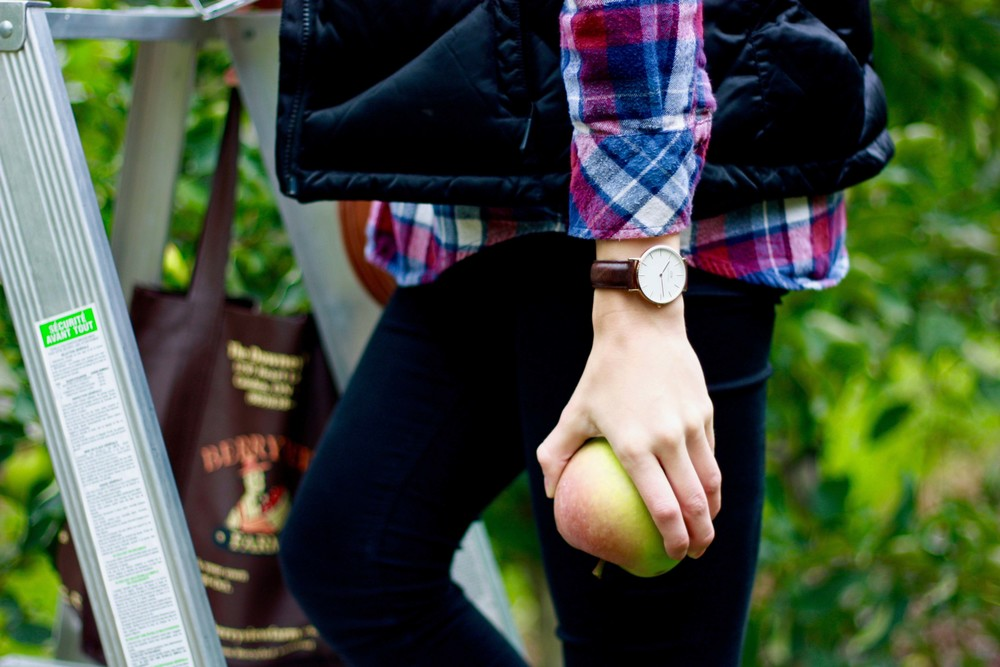 Original Post: Apple Picking With the Apple of My Eye