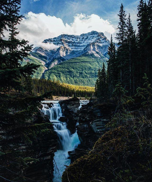 Morning Falls| Athabasca| CA
