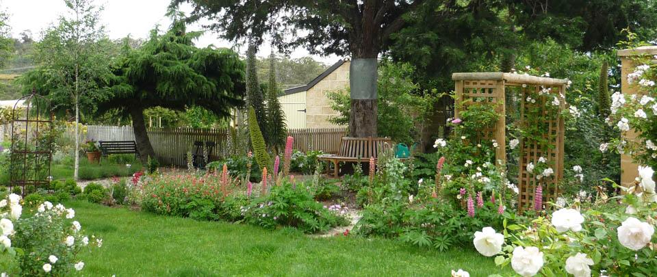 garden6ws.jpg