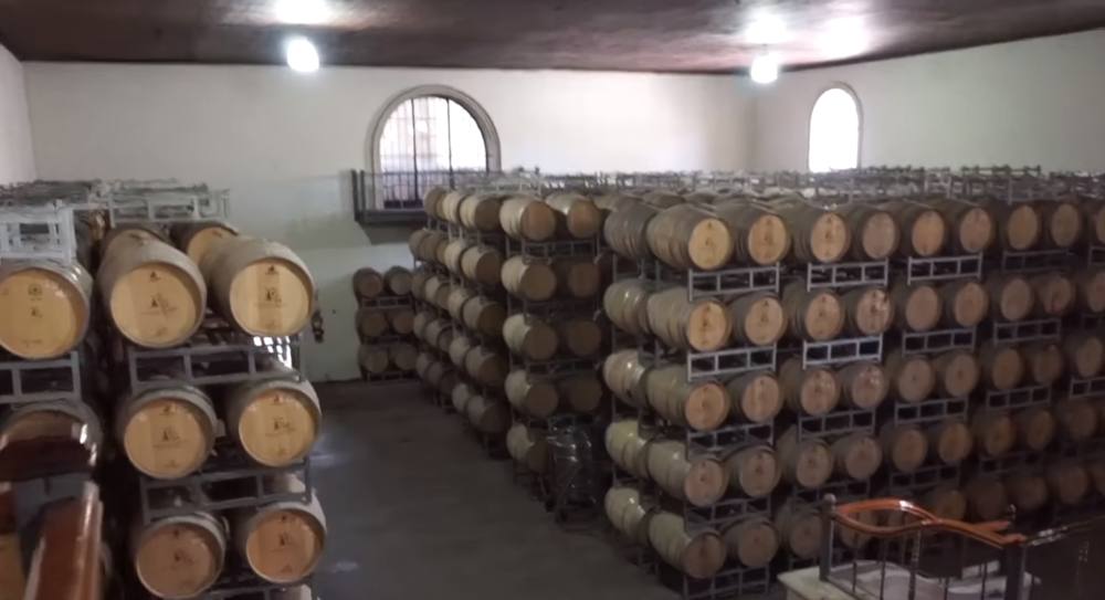 wine barrels in mendoza malbec country