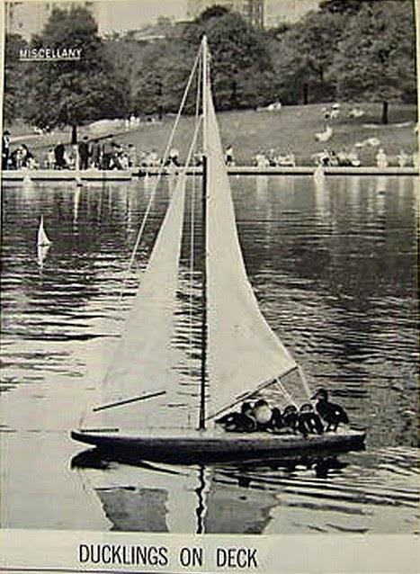 1958 LIFE Magazine Photo