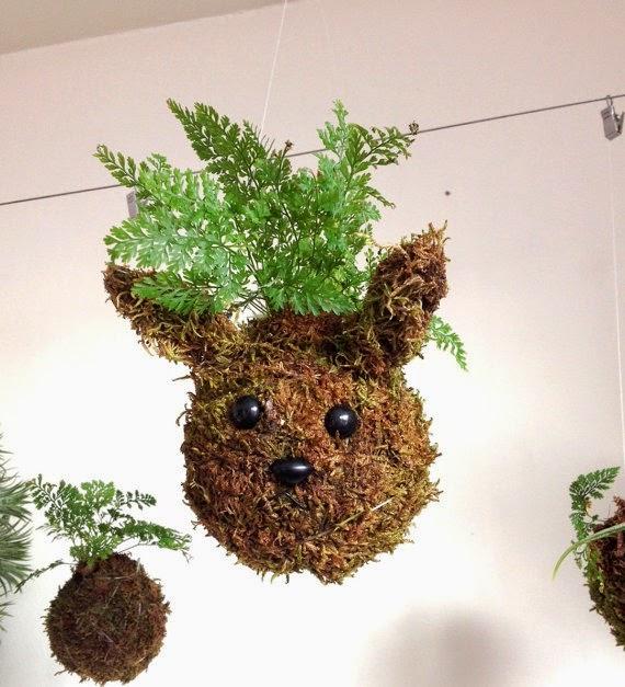 Art of Plants - Rabbit Plant