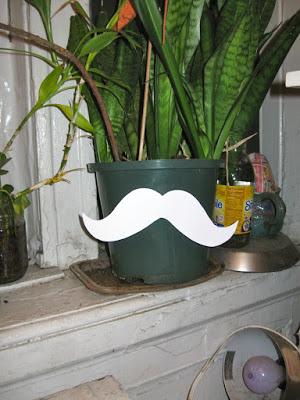 mustache_planter.jpg