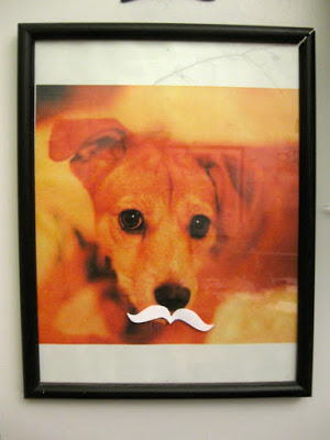 photo_mustache.jpg