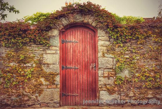 A photograph by Jennifer Kelleher of  Kilarney National Park .