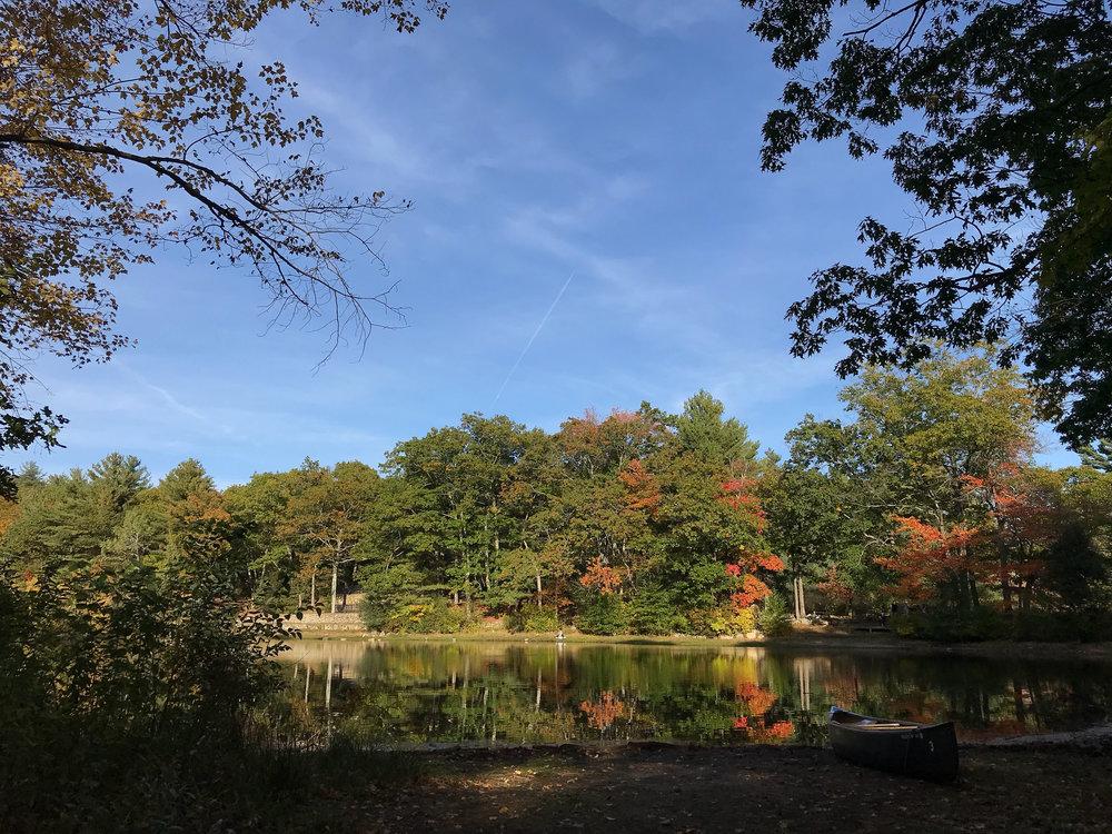 Rocky Woods Trail (Medfield, Massachusetts)